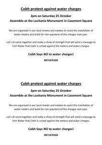 Cobh25Octprotest